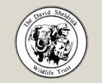 The David Sheidrick Wildlife Trust
