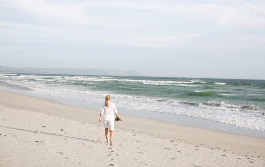 The Cape Floristic Region Beach View