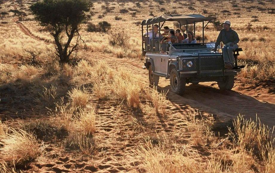 Kalahari desert safari view