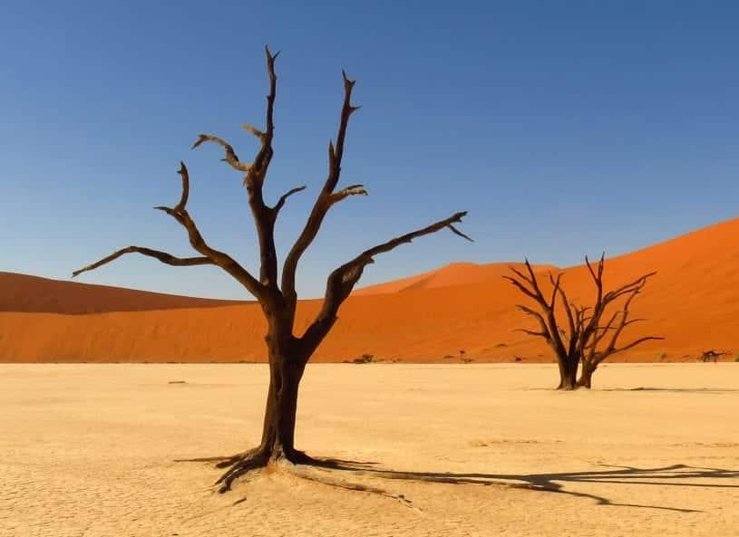 Kalahri Desert
