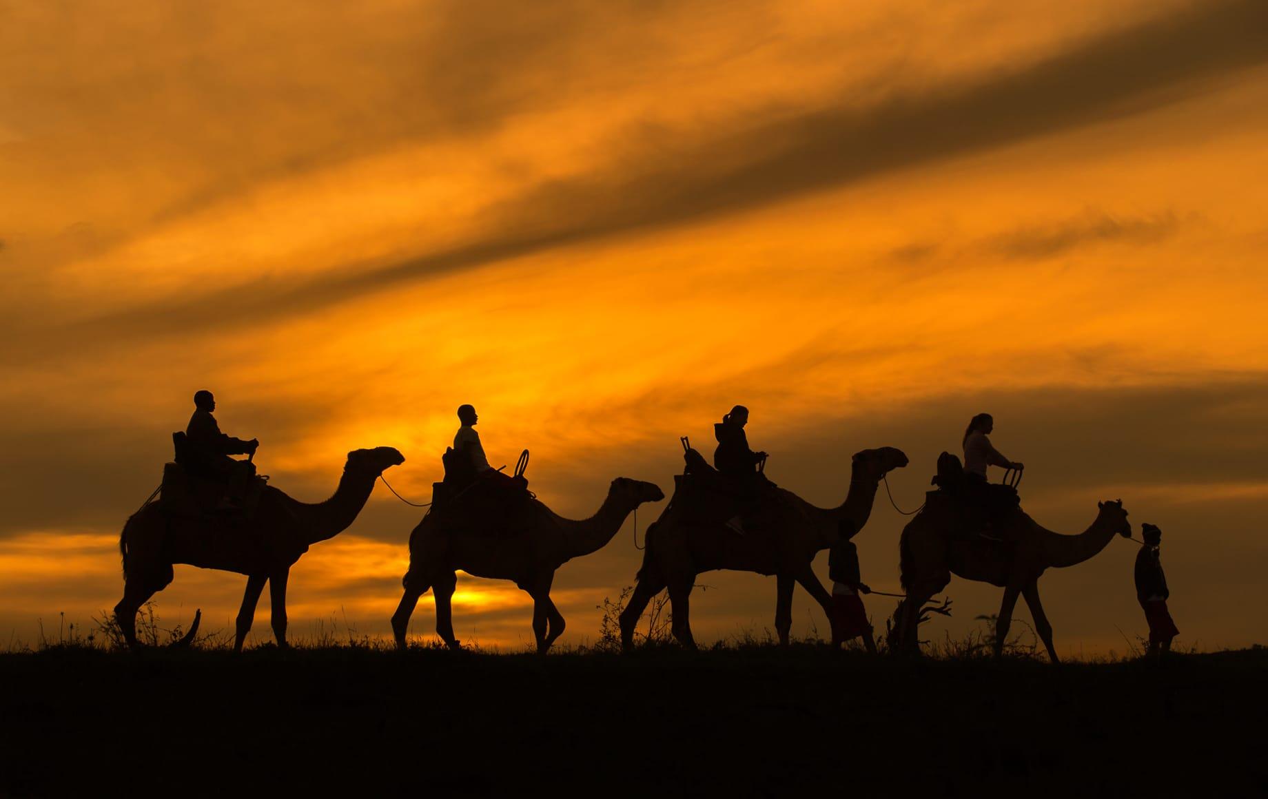 The Laikipia Plateau is a wonderful destination for camel-back safaris