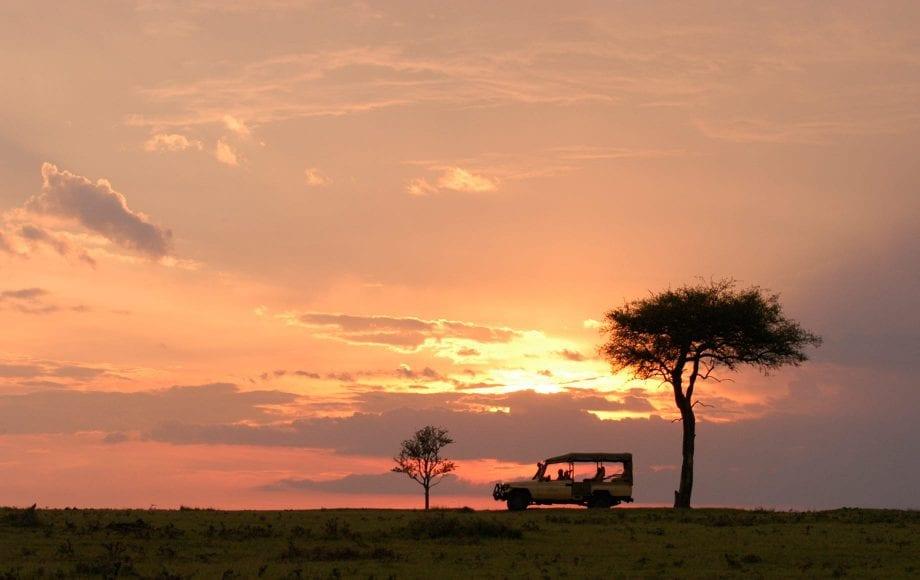 Serene view at Maasai Mara