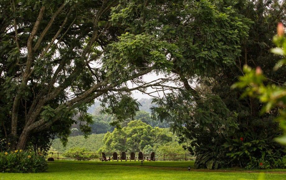 The Manor at Ngorongoro Crater