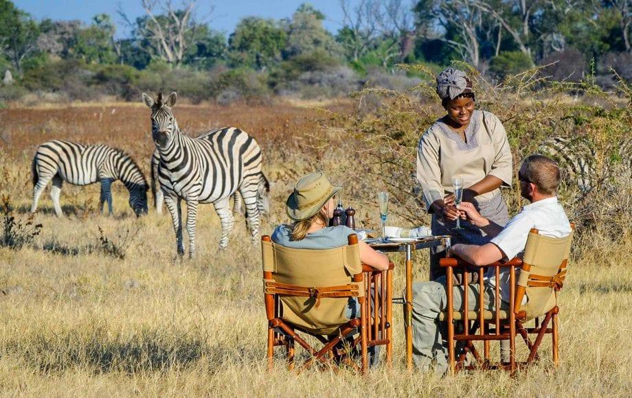 Enjoying champagne while watching Zebras