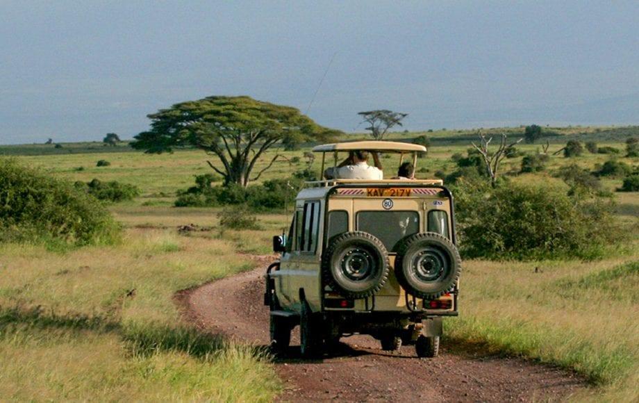 Climbing Kilimanjaro & Tanzania Safaris