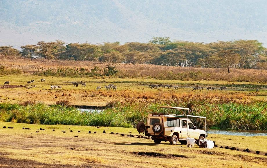 The Ngorongoro Conservation Area expands across rich, diverse wildland, hosting a vast array of wildlife and beautiful, natural tourist destinations