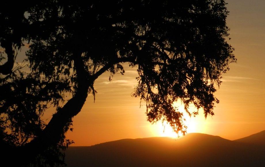Sunset view Ngorongoro Conservation Area