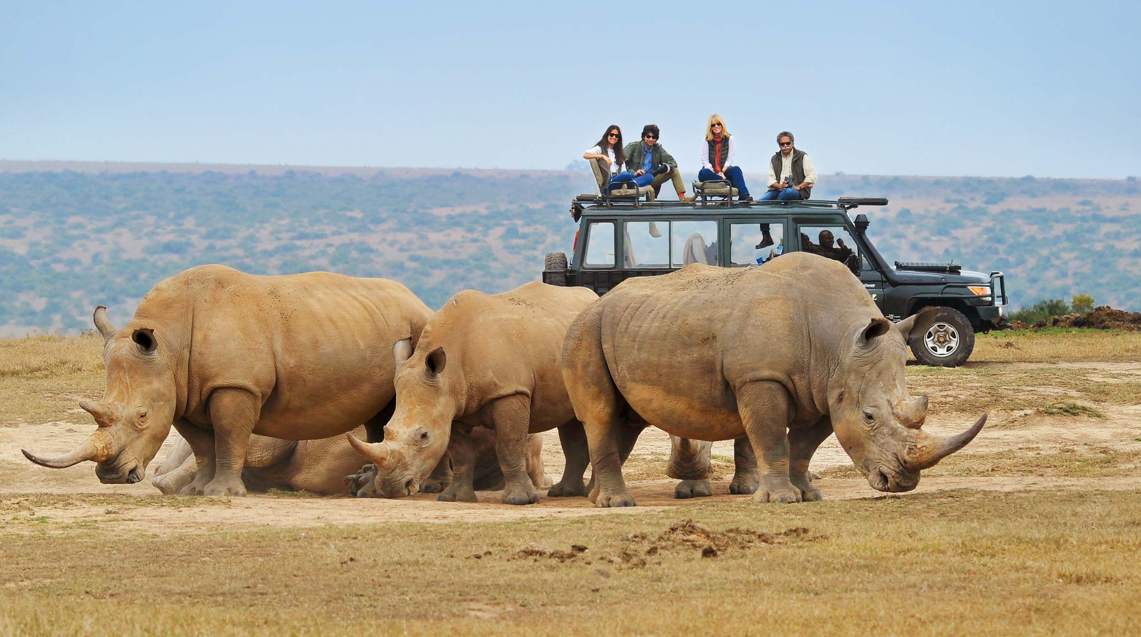 the pinto family on a jeep watching rhinos