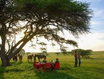 Private Safari Group