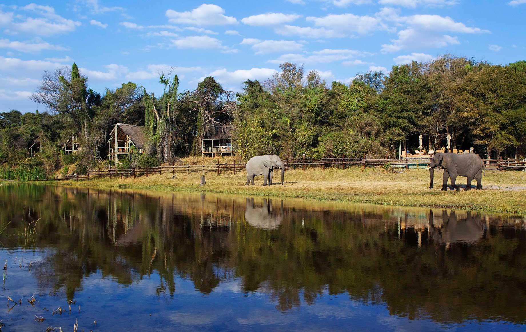 Reflection of beautiful nature on the crystal clear lake in Savuti Chobe safari