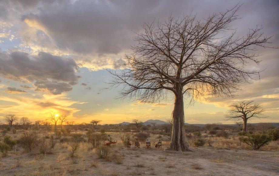 Selous and Ruha Game Reserve Safari