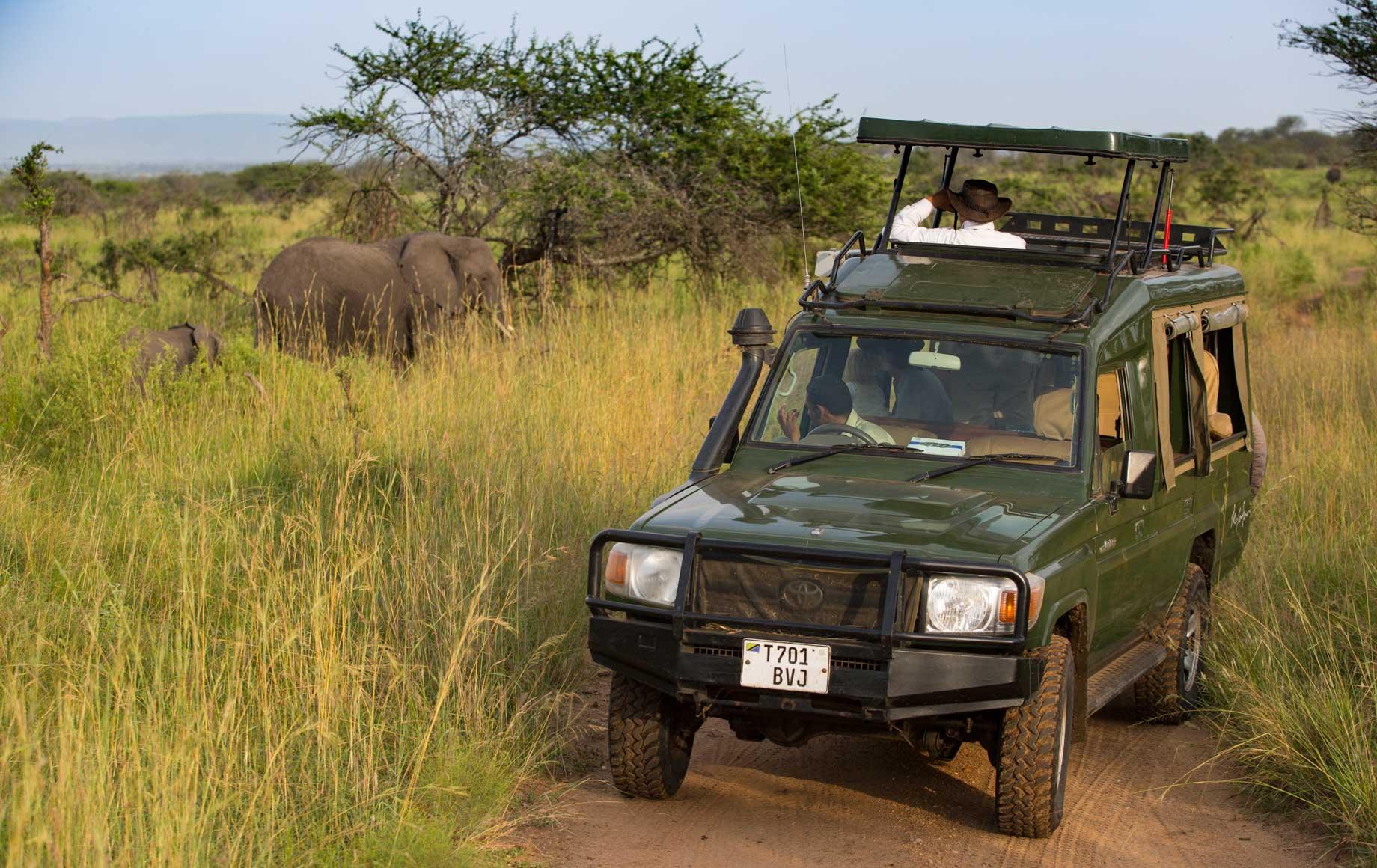 Serengeti Migration Camp