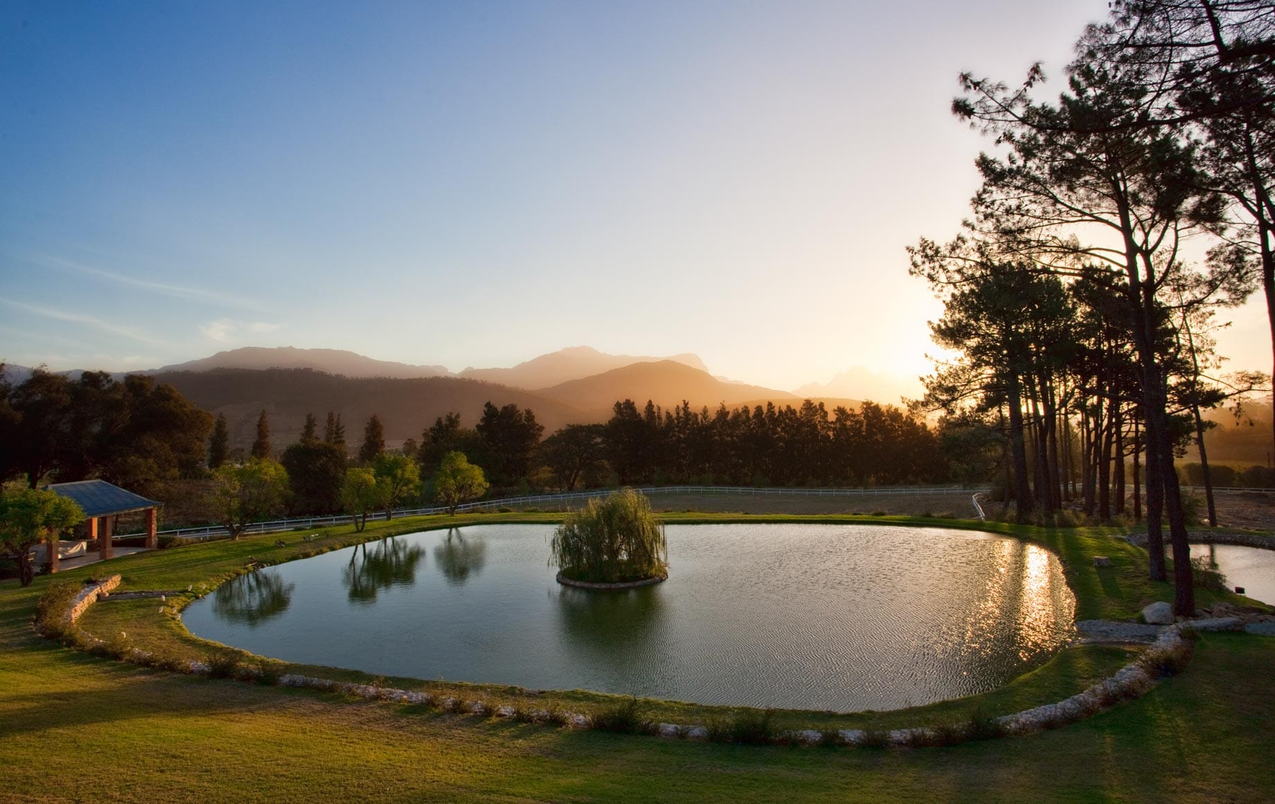 Peaceful pond and natural scenes in Cape Winelands