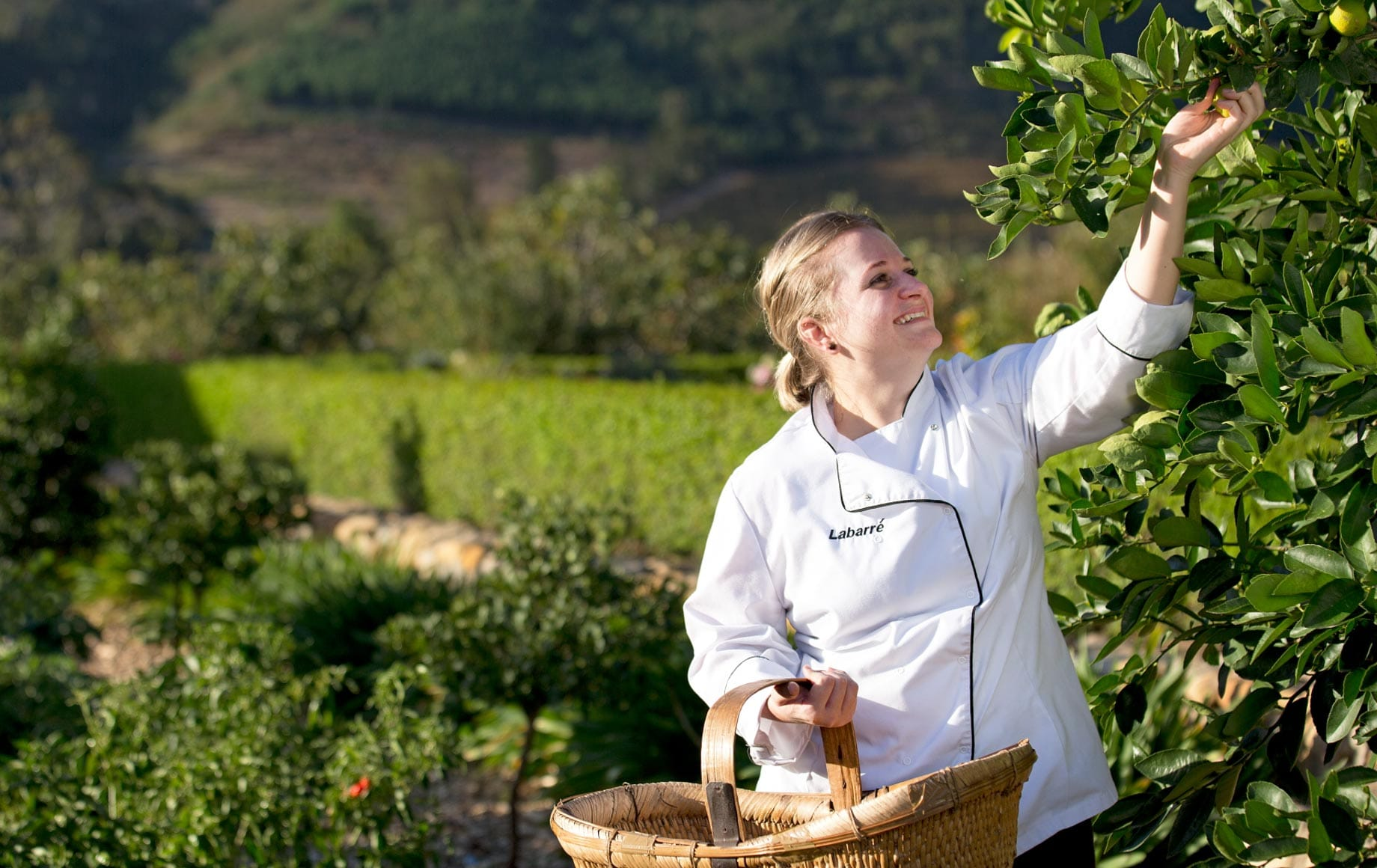Woman happily picking up fruits in Cape Winelands