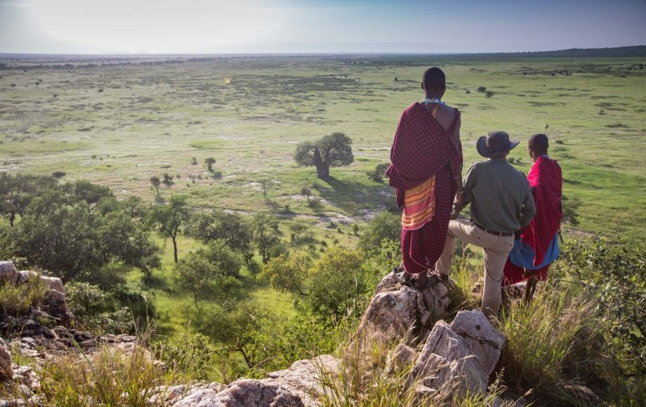 Men looking at the scenery of Tarangire National Park
