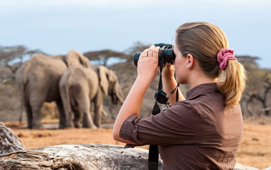 Wildlife with Binocular