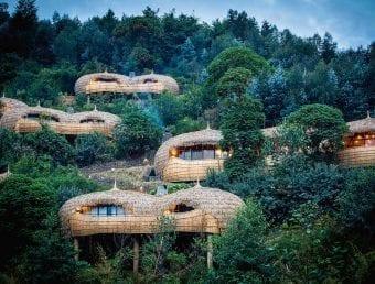 Wilderness Safaris Bisate Lodge