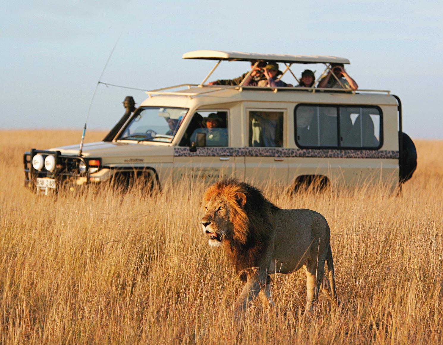 Private Classic Safari