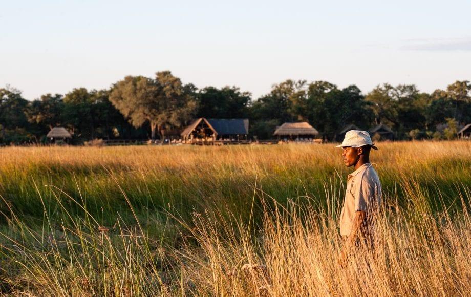 Sable Alley - Okavango Delta, Botswana