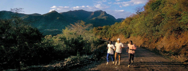 Runners running along a trail