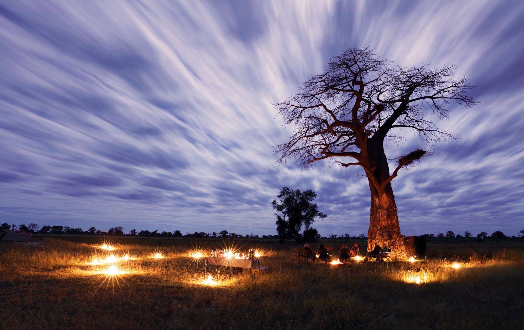 View of tree and clouds over Africa plain