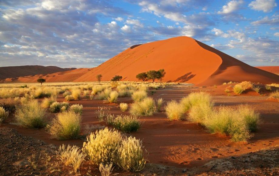 A sand mound