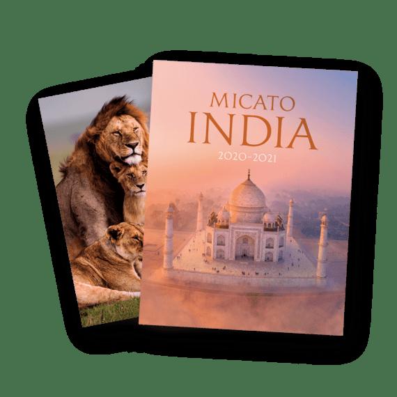 India Brochure