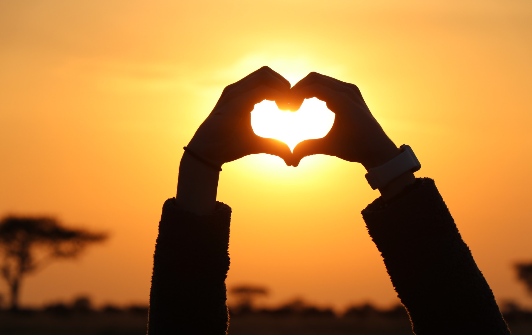 A heart made of hands over the sun