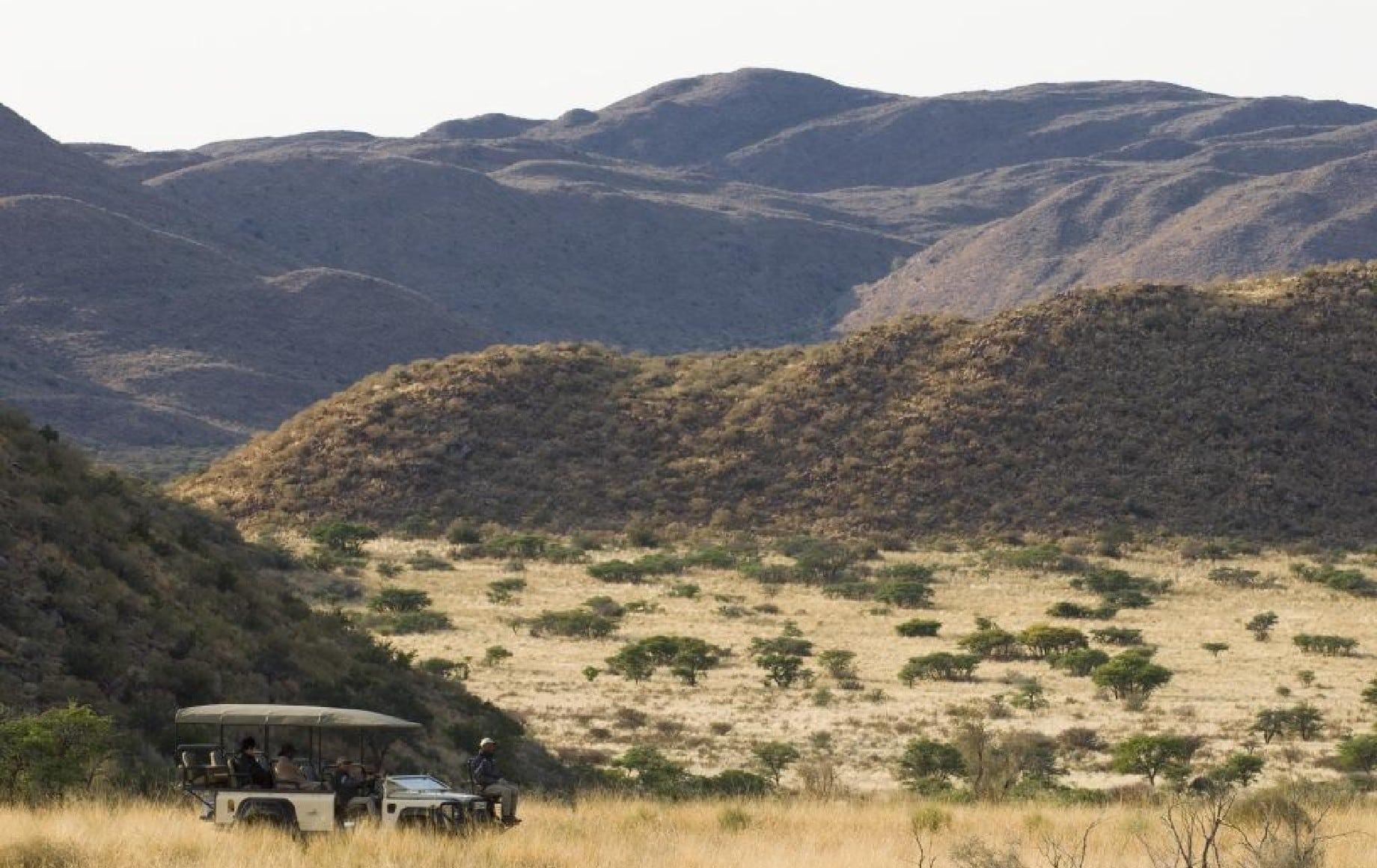 a safari vehicle driving through the savannah