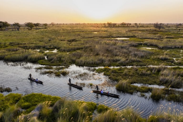 mokoro boats in the Okavango Delta