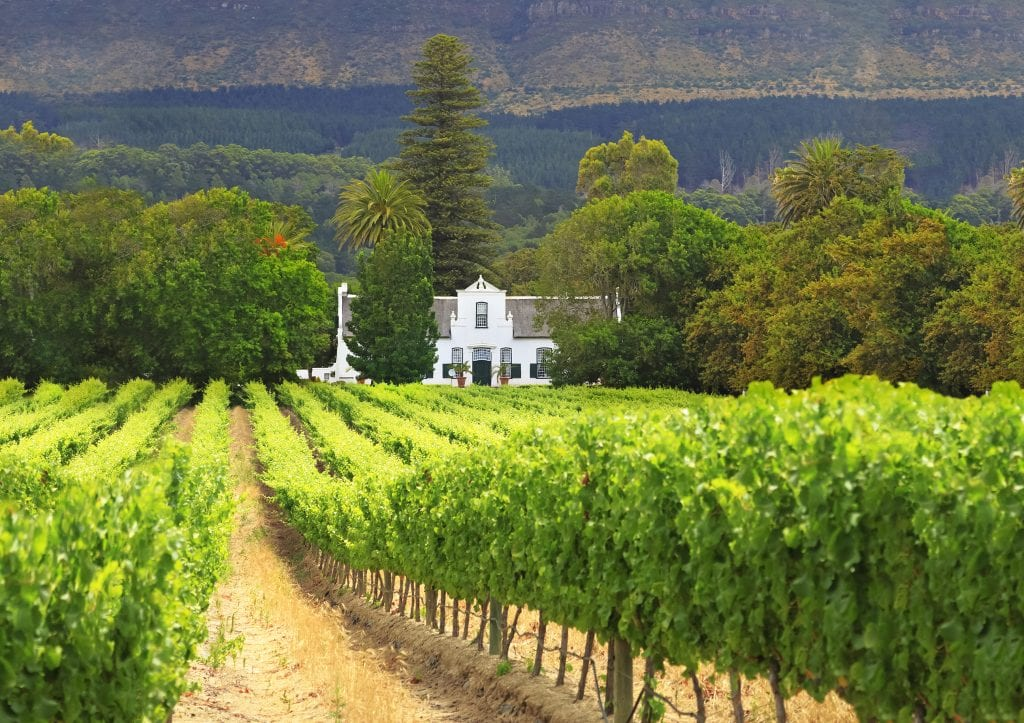 a white house situated on a vineyard