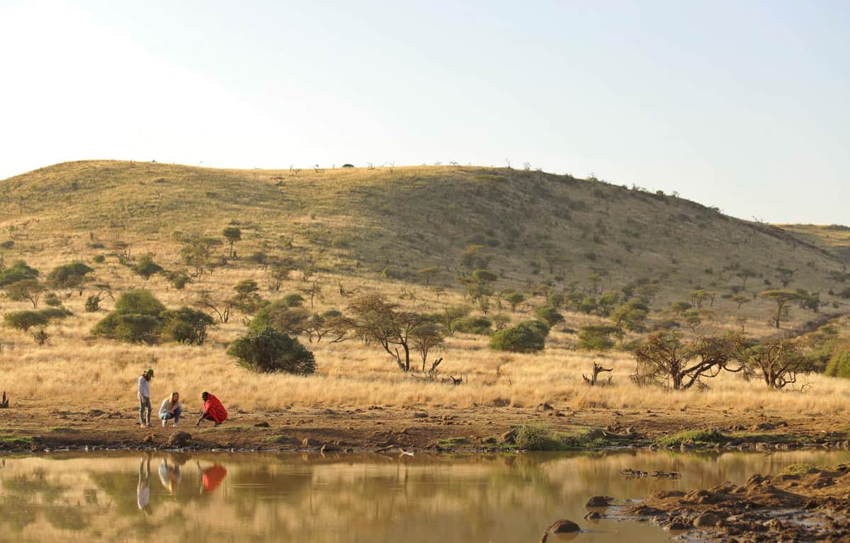 Guide Traveler Water Hole