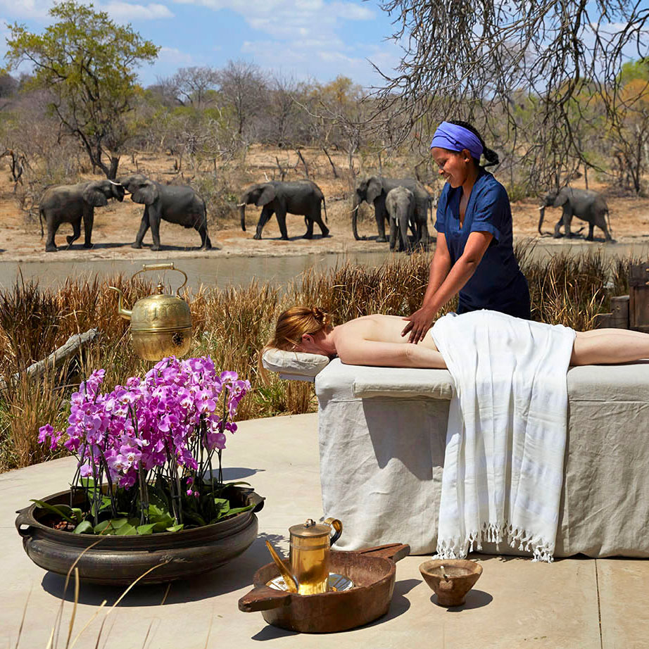 a woman getting an outdoor massage with elephants in the background