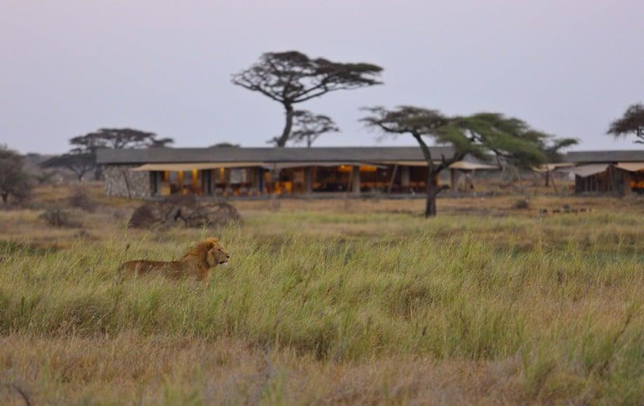 huts at Namiri Plains