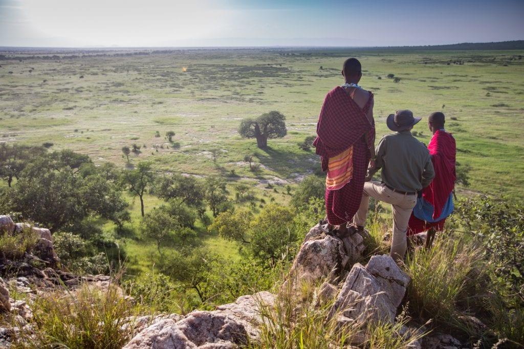 Walking Safari at Tarangire Treetops