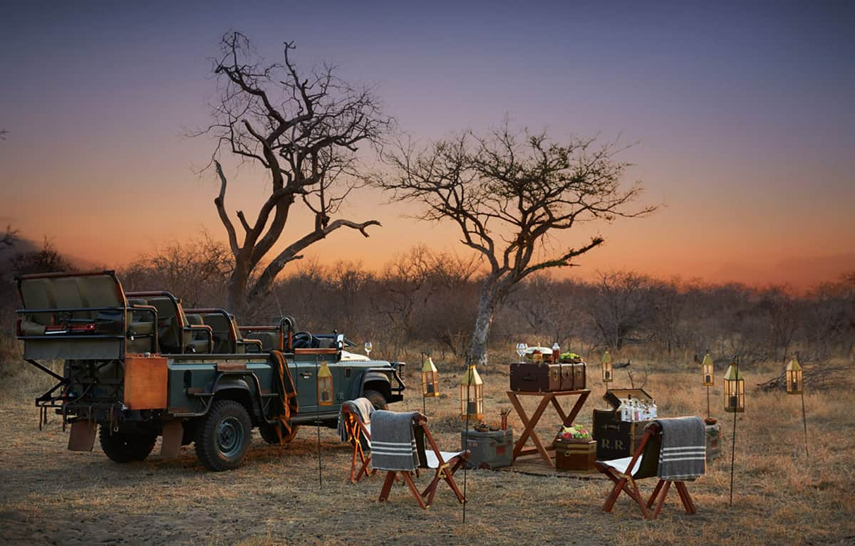 Safari Picnic
