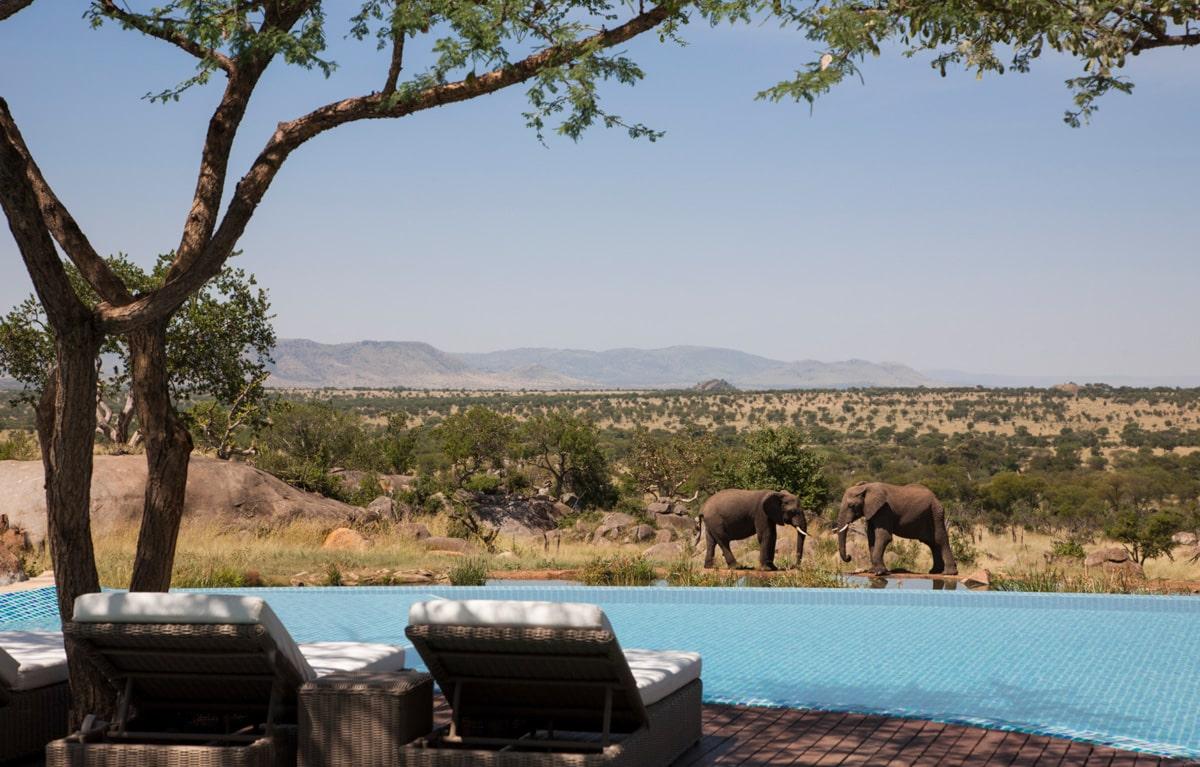 Two Elephants Pool