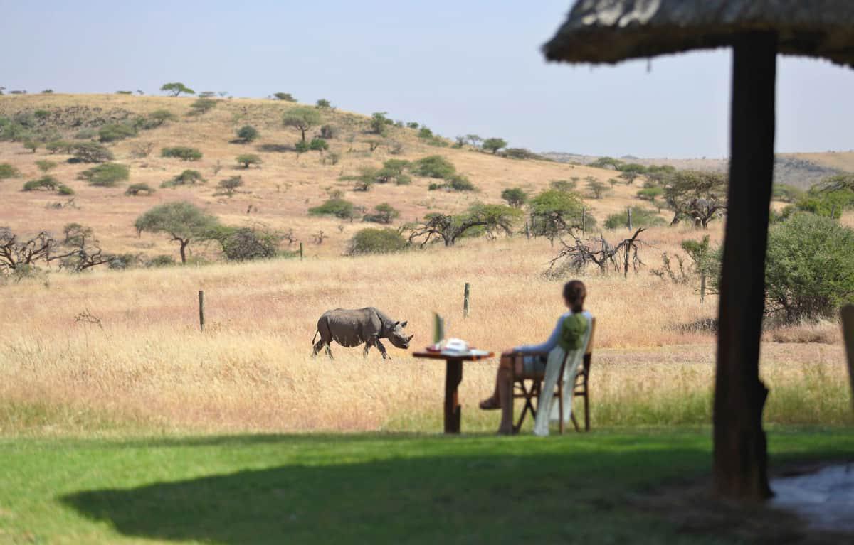 Woman Rhino