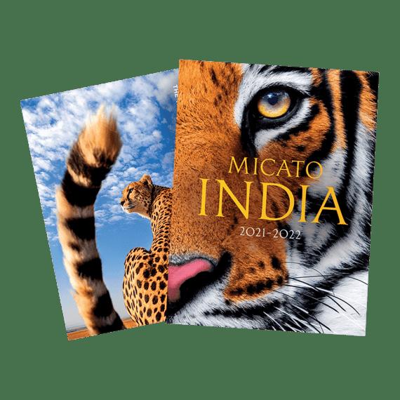 India Brochure 2021-2022
