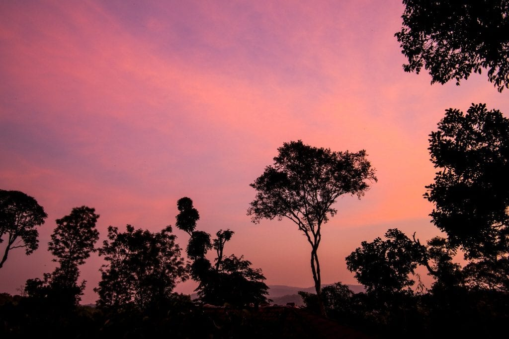 sunset over coorg, india