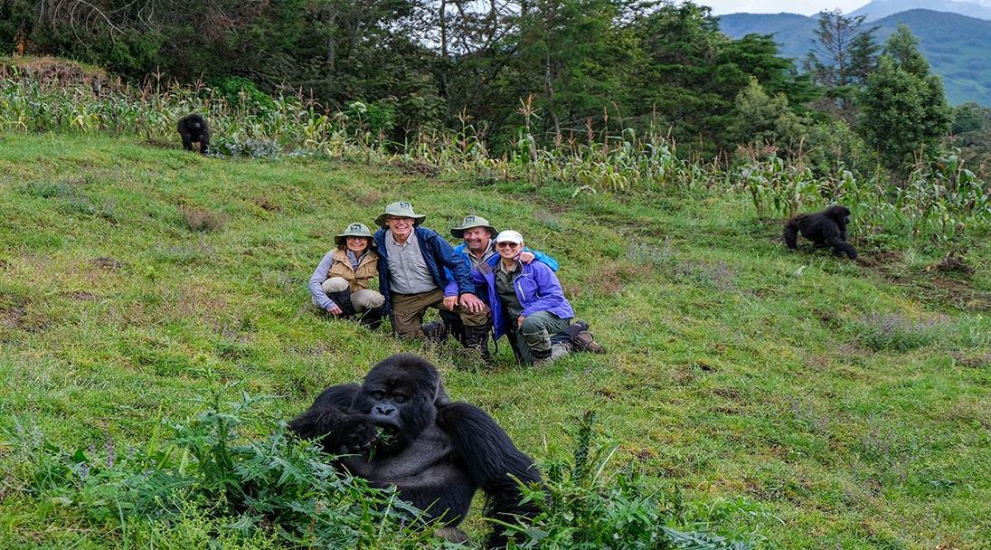 group on safari posing with gorillas