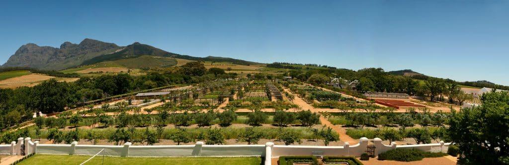 gardens, babylonstoren, south africa
