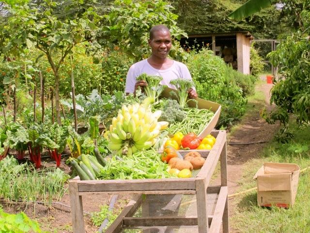 farm worker at sirkioi lodge, kenya