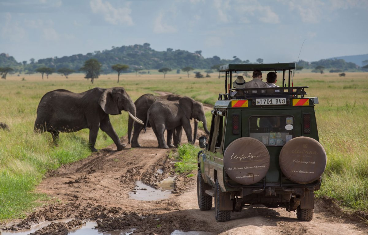 A group out on a safari riding in a jeep.